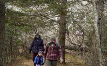 Wild blueberry growers, processors prepare legislation remaking WBC
