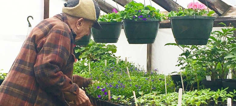 A green thumb in action for 97 years